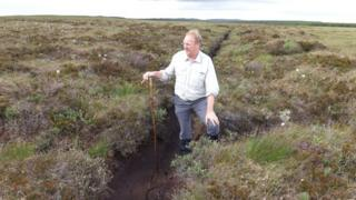 Dried up, degraded peat bog at Strathy South site