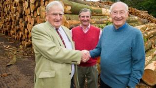 Timber deal