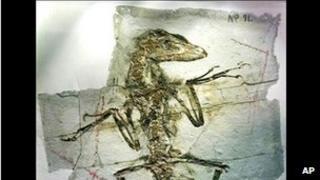 Fosail
