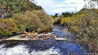 Sulby River, Isle of Man