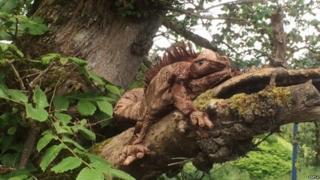 Cuddly toy iguana