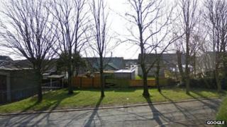 Trees at Yewbarrow Road