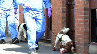 Dogs and forensic science officers