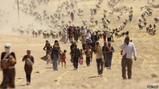Displaced members of the Yazidi community in northern Iraq