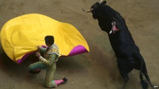 Bullfight in Medellin in January 2014