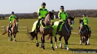 Special officers on horseback at Snetterton, Norfolk