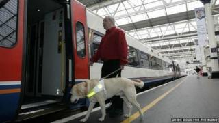Guide dog and owner