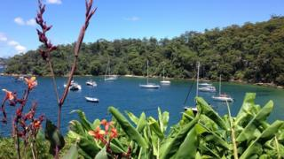 Sydney - Jon Donnison