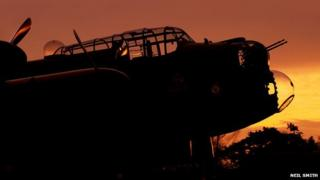 Just Jane at sunset