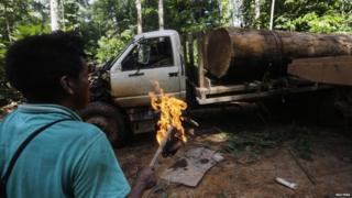 Ka'apor indigenous man burns truck