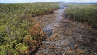 In this Sept. 1, 2014 photo released by the U.S. Geological Survey, fluid lava streams from the June 27 lava flow from the Kilauea volcano in Pahoa, Hawaii.