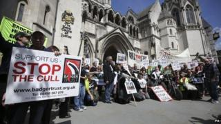 Badger Trust and cull protesters outside the Royal Courts of Justice in London