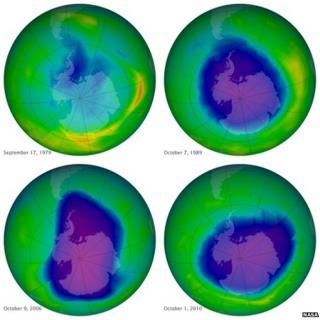 Ozone layer showing 'signs of recovery', UN says