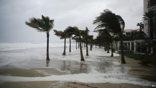 Winds blow palm trees on the beach in Los Cabos, Mexico, Sunday, Sept. 14, 2014.