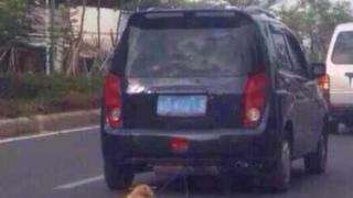 A dog being dragged behind a car