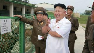 North Korean leader Kim Jong-un 'has illness'