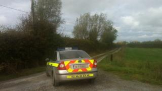 The incident happened just outside Newtownshandrum, in the Charleville area, on Sunday