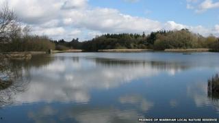 Warnham Mill Pond
