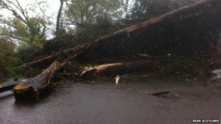 Landslips and fallen trees have blocked the A82