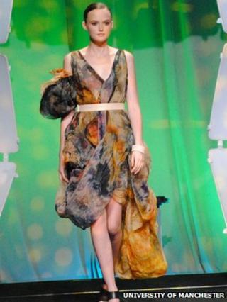 Dress inspired prostate cancer studies