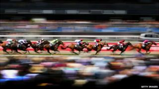 The field goes along the straight during race 3 the Carnival Handicap during Melbourne Cup Day at Flemington racecourse - 5 November 2013