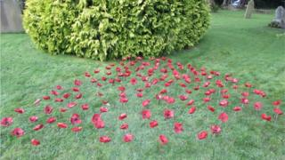 Poppies at Slinfold Primary School
