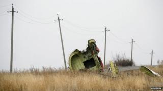 Part of the wreckage near Grabove in eastern Ukraine (8 Nov)