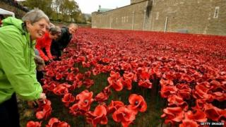 A group of volunteers remove poppies from the moat
