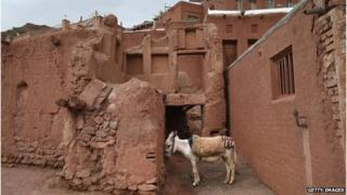 A donkey standing by a wall in an Iranian mountain village