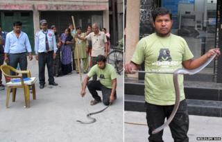 A man capturing the snake found at the Delhi ATM