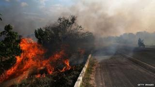 ZE DOCA, BRAZIL - NOVEMBER 23: A fire burns along a highway in a deforested section of the Amazon basin on November 23, 2014 in Ze Doca, Brazil.