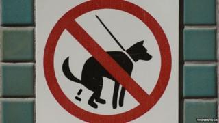 Dog mess warning
