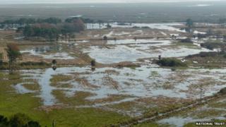 Cwm Ivy marsh
