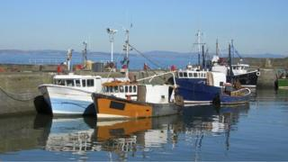 fishing boats in harbour