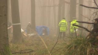 Blackwood Forest crash site