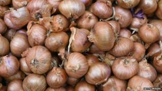 Onions piled up