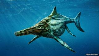 New species of marine reptile