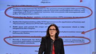 EU Trade Commissioner Cecilia Malmstroem, 13 Jan 15