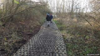 Trackway at Shapwick Heath nature reserve