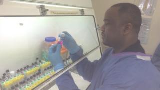 Ebola centre Pic: Brian Innes