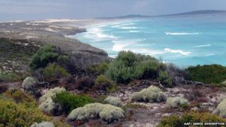 Aerial picture of the Eyre Peninsula (file image)