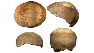 Manot Skull