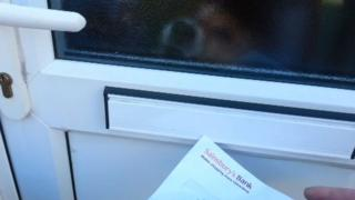 Dog and letterbox