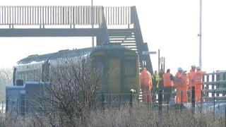 Train at scene of horse deaths