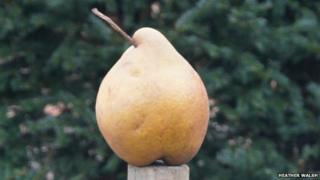 Old Warden Pear