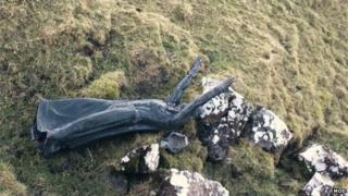 Celtic sea god statue