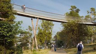 Artist's impression of treetop walkway at Westonbirt Arboretum