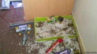 SSPCA flat mess
