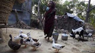 Woman in Murshidabad