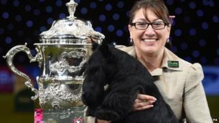 Knopa, the Scottish Terrier, with handler Rebecca Cross after winning Best in Show during day four of Crufts 2015 at the NEC in Birmingham.
